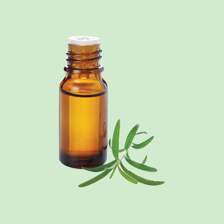 Essential Oil Aromatherapy